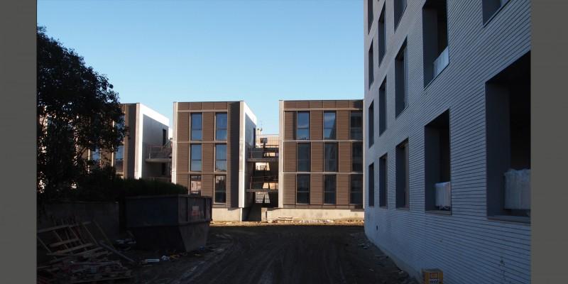 albizias - chantier
